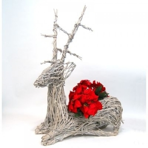 Holiday Vine and Decor